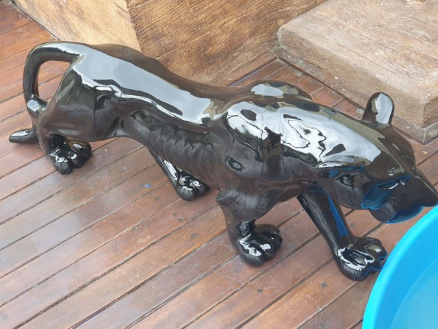 Jaguar Maravilhoso  - Foto 3