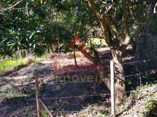Terreno à venda em Samambaia |, Juatuba cod:TE00042 - Foto 8