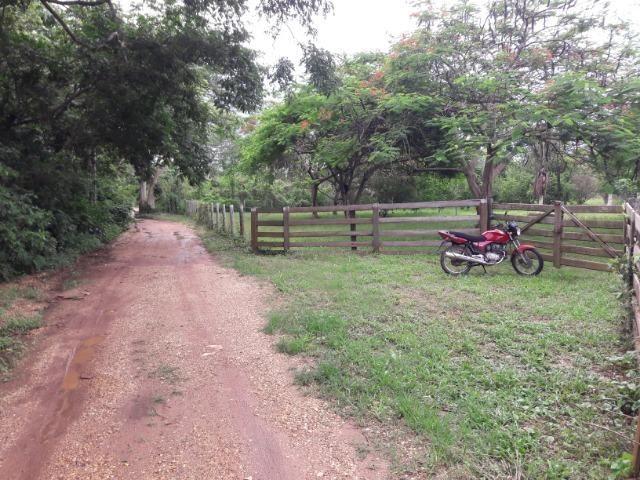 Vende-se uma chácara na beira do rio Cuiabá - Foto 15