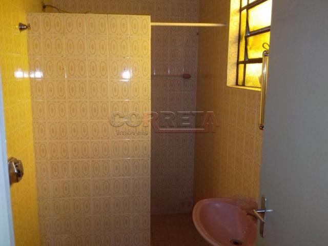 Casa para alugar com 2 dormitórios em Vila sao paulo, Aracatuba cod:L11261 - Foto 4