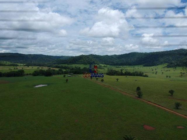 Fazenda à venda, por R$ 11.594.000 - Alta Floresta D'Oeste/RO - Foto 6