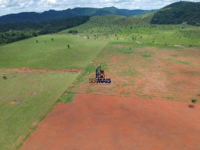 Fazenda à venda, por R$ 11.594.000 - Alta Floresta D'Oeste/RO - Foto 10