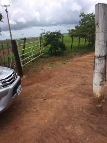 Fazenda-Granja-Sítio com 21 Hectares em Aliança - Foto 5