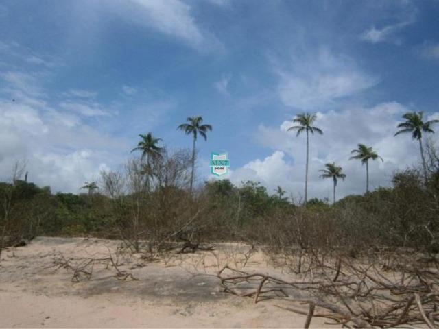 Itacaré. Fazenda de frente para o mar com 100 Hectares - Foto 5