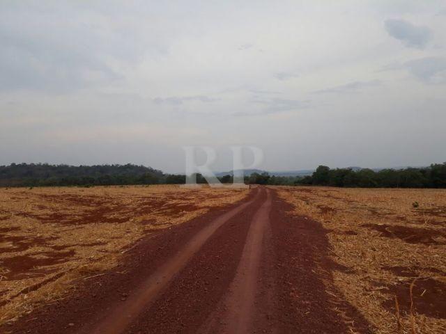 Fazenda 2006 Hectares em Tocantis - Foto 4