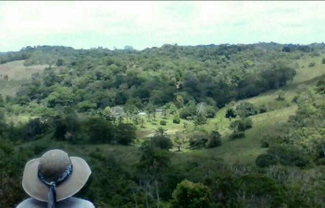 Fazenda Rov Ilhéus-Buararema - Foto 2