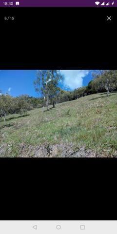 Vendo terreno a 7 kilomentro do centro de Santa Leopoldina fica e em Bragança - Foto 5