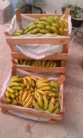 Bananas direto da chacara ,sem agrotóxicos - Foto 3