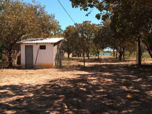 Chácara na Beira do Lago! 14 km de Palmas! Praia de Águas Cristalinas! - Foto 13