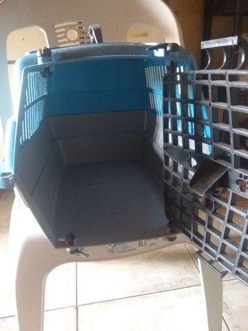 Vendo transporte pra gatos - Foto 4