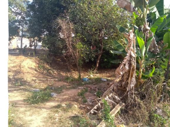 Terreno à venda em Vila maria regina, Juatuba cod:TE00013 - Foto 13