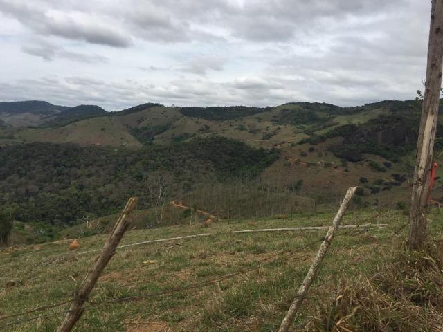 Venda-se está fazenda de 250 alqueires no Município de Fervedouro/MG - Foto 4