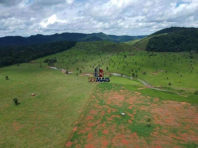 Fazenda à venda, por R$ 11.594.000 - Alta Floresta D'Oeste/RO - Foto 18