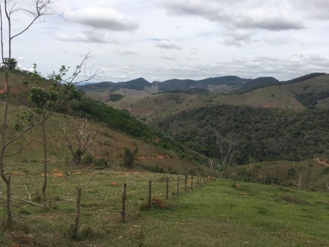 Venda-se está fazenda de 250 alqueires no Município de Fervedouro/MG - Foto 5