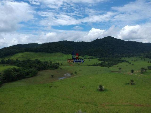 Fazenda à venda, por R$ 11.594.000 - Alta Floresta D'Oeste/RO - Foto 13