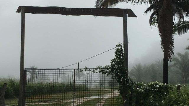 Fazenda com 980 hectares no município de Palmeirais-PI, 95 km de Teresina - Foto 20