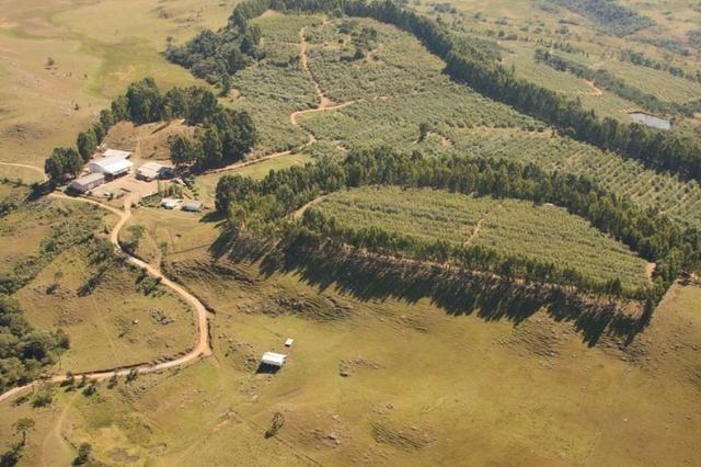 Sitio em Urubici/ área rural /chácara fazenda em Urubici 223.460 m² - Foto 7