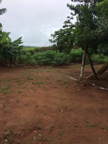 Fazenda-Granja-Sítio com 21 Hectares em Aliança - Foto 8