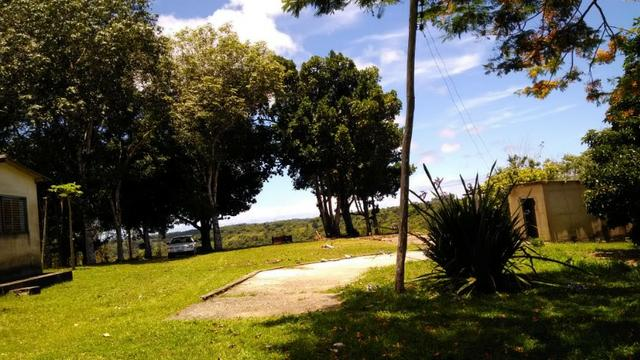 Fazenda Rov Ilhéus-Buararema - Foto 4