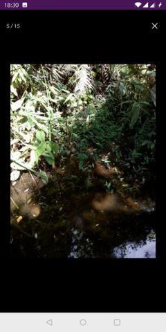 Vendo terreno a 7 kilomentro do centro de Santa Leopoldina fica e em Bragança - Foto 2