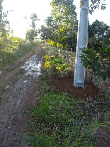 Arrendamento - Fazenda com 82 ha, Una-BA - Foto 20