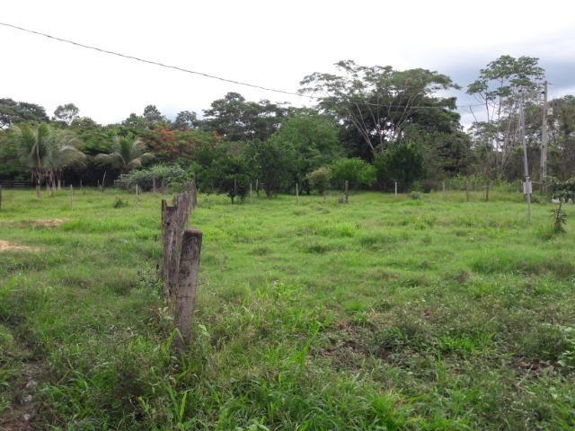 Vende-se uma chácara na beira do rio Cuiabá - Foto 8