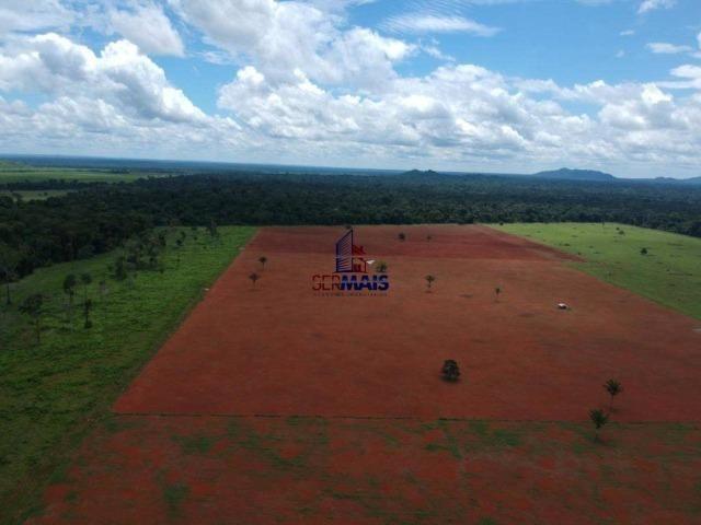 Fazenda à venda, por R$ 11.594.000 - Alta Floresta D'Oeste/RO - Foto 12