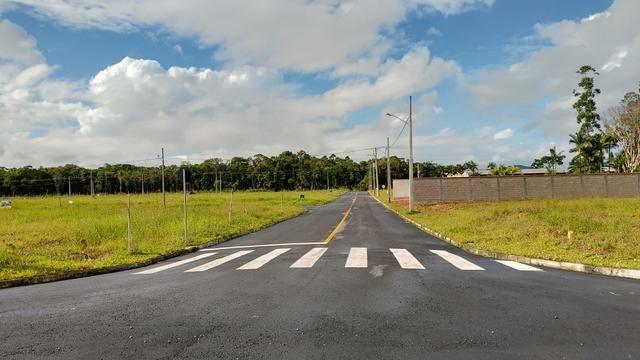 Terreno no Loteamento Viverdi - Centro - Garuva - Foto 6