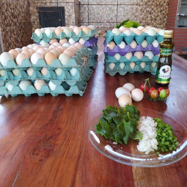 Ovos caipiras - Foto 4