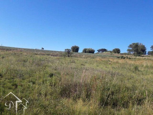 Área com 3,5 Hectares, Passo da Capivara Santa Maria -10022 - Foto 7
