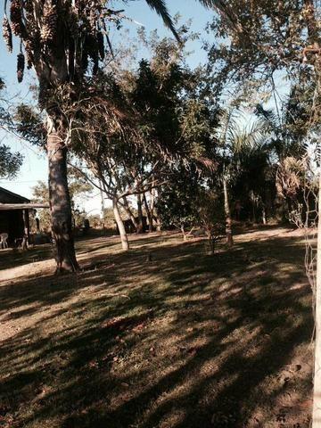 23 hectares p cultura e Psicultura - Foto 11