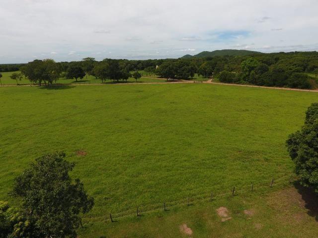 Chácara na região de Santo Antônio de Cuiabá com 32 HA Uma propriedade dos sonhos a 25 - Foto 7