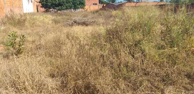 Oportunidade em planaltina DF vendo excelente lote de 1.150 metros no araponga - Foto 4