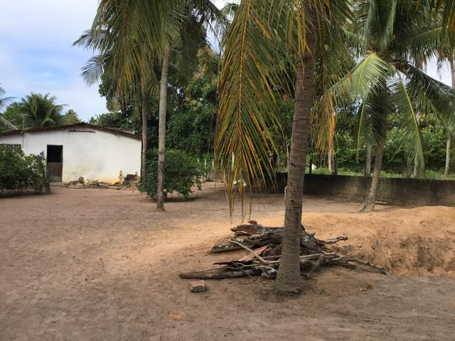 Sol 22 - Excelente Granja sendo 6385m² no Centro - São José de Mipibu - RN - Foto 14