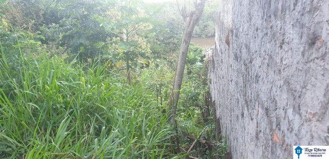 Terreno as margens do Rio Jacuípe - Linha Verde - Foto 6