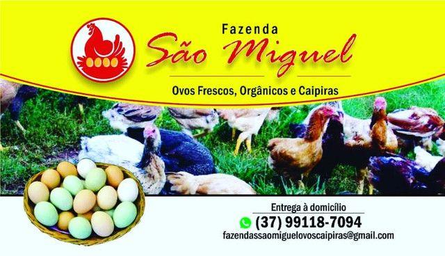 Ovos caipiras - Foto 6