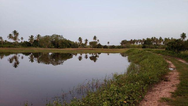 Belíssima fazenda com 295 há em ceara mirim, curral, casas, rio perene,poço