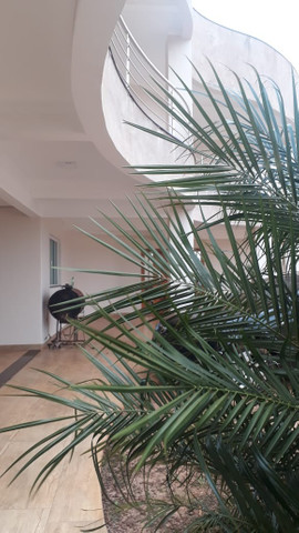 Vende ou Aluga-se Linda Casa em Juranda-Pr - Foto 4