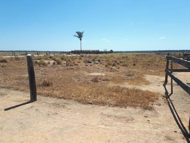 Fazenda de 220 alqueire em Novo Mundo -MT - Foto 2