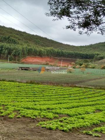 Fazenda produtiva, 116 ha, vale alpino, teresópolis, rj - Foto 3