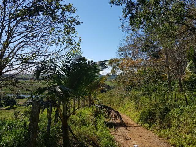 Vendo fazenda em Nova Almeida - Foto 10