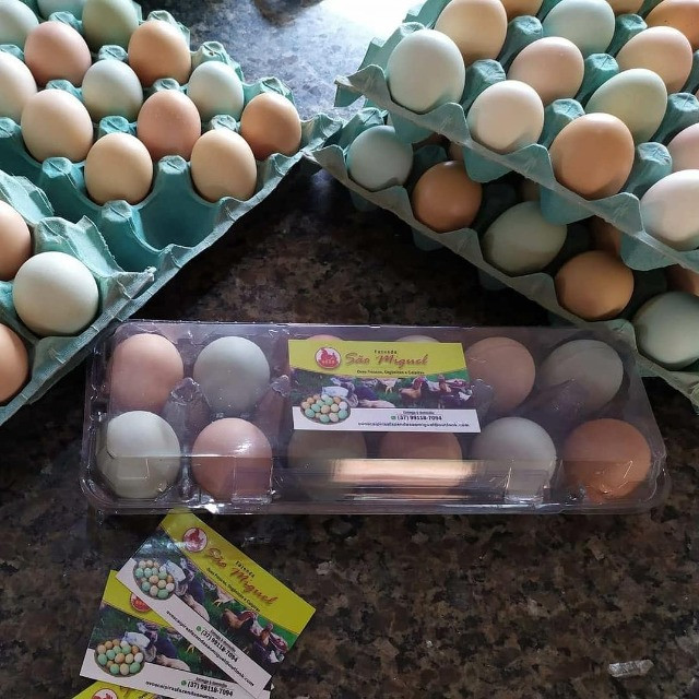 Ovos caipiras - Foto 3