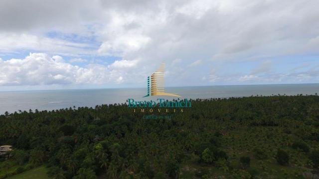 Terreno Residencial em Guaiu - Foto 2