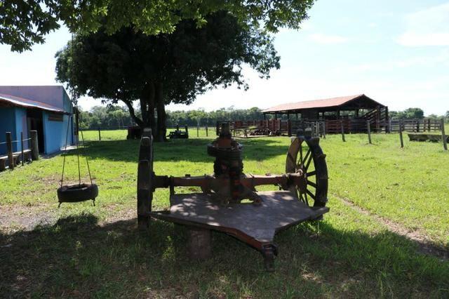 Chácara na região de Santo Antônio de Cuiabá com 32 HA Uma propriedade dos sonhos a 25 - Foto 10
