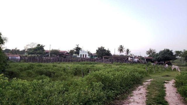 Belíssima fazenda com 295 há em ceara mirim, curral, casas, rio perene,poço - Foto 4
