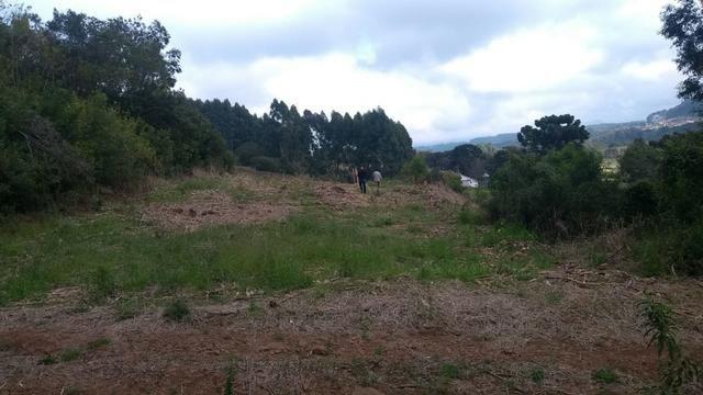 Sítio em Nova Petrópolis com 20,5 hectares - Foto 5