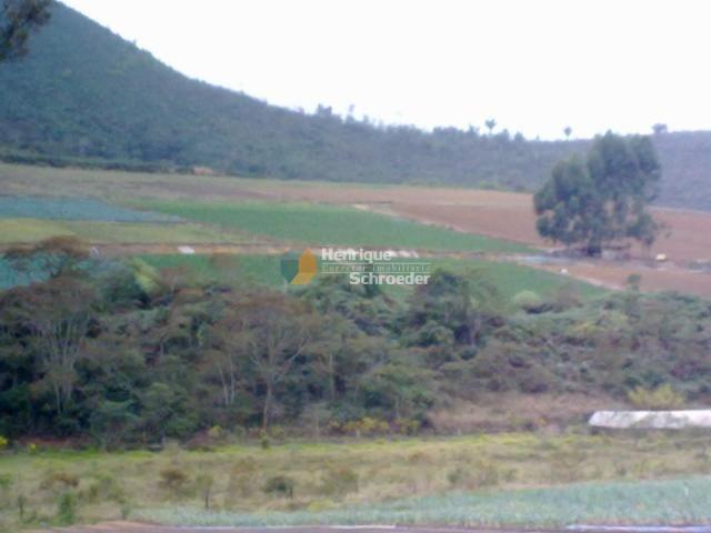 Fazenda produtiva, 116 ha, vale alpino, teresópolis, rj - Foto 8