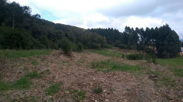Sítio em Nova Petrópolis com 20,5 hectares - Foto 7
