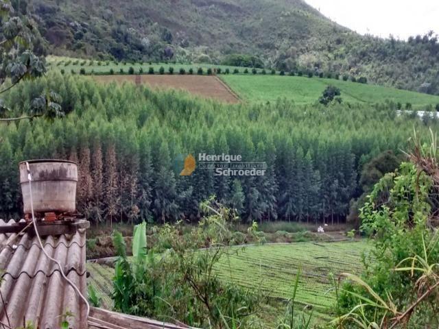 Fazenda produtiva, 116 ha, vale alpino, teresópolis, rj - Foto 5