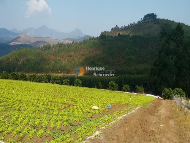 Fazenda produtiva, 116 ha, vale alpino, teresópolis, rj - Foto 2